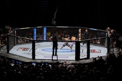 UFC Fighting Night Preview